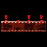6. Marked-Negatives